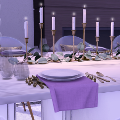 dinner party_002